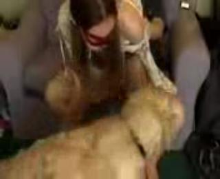 Download vidio bokep Couple and a dog mp4 3gp gratis gak ribet