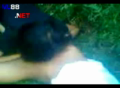 video mesum di kebun | Nonton Video bokep indo sex Download film youtube porno